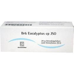 JSO Br 6 Eucalyptus cp Globuli 20 g