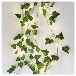 TOPMELON Lichterkette LED Lichterkette, 20-flammig, 2M,20LED,2er Pack grün