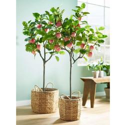 Schneider Kunstbaum, Maße (H/Ø): 150/80 cm grün Künstliche Zimmerpflanzen Kunstpflanzen Wohnaccessoires Kunstbaum