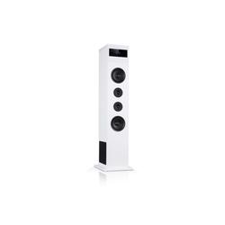Auna Karaboom 100 Turmlautsprecher 120W max. Bluetooth 2 in 1 USB Lautsprecher weiß