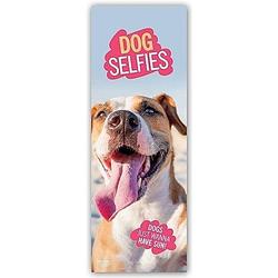 Dog Selfies - Hunde-Selfies 2021