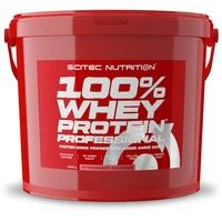 Scitec Nutrition 100 % Whey Protein Professional Erdbeer Pulver 5000 g