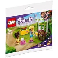 Lego Friends Blumenwagen 30413