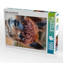Alpakas - süß und flauschig Lege-Größe 48 x 64 cm Foto-Puzzle Bild von Peter Roder Puzzle