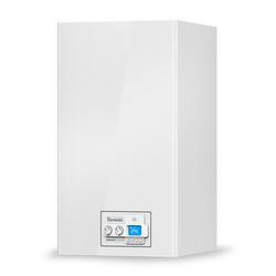 Thermona Gastherme | Therm 35 KDZ 37 kW | Erdgas E / H