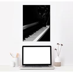 Posterlounge Wandbild, Schwarze Katze auf einem Klavier 30 cm x 40 cm