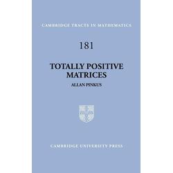 Totally Positive Matrices als Buch von Allan Pinkus/ Pinkus Allan