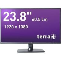 """WORTMANN Terra 2456W 24"""""""