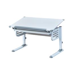 ebuy24 Schreibtisch Skog Schreibtisch mit hebe/senk Platte und 1 Schu