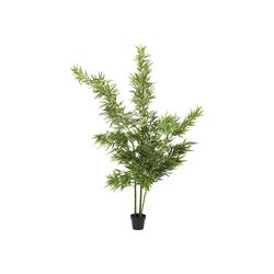 KARE Dekoobjekt Deko Pflanze Bamboo Tree 200cm