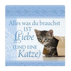 """H&H Romantisches Geschirrtuch """"Alles was... Katze"""" Handtuch"""