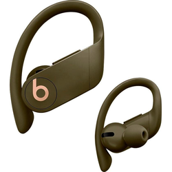 Beats by Dr. Dre Powerbeats Pro Wireless In-Ear-Kopfhörer (Bluetooth) grün