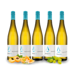 Kennenlernpaket Weingut Arnold aus der Pfalz