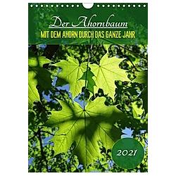 Der Ahornbaum - Mit dem Ahorn durch das ganze Jahr. (Wandkalender 2021 DIN A4 hoch) - Kalender