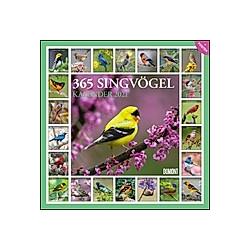 365 Singvögel 2021
