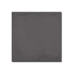1900 Basalto 20,0x20,0