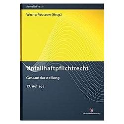 Unfallhaftpflichtrecht - Buch