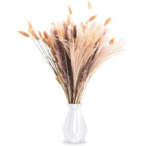 FORMIZON Pampasgras Getrocknet, 35 Pcs Pampasgras Blumenstrauß, Phragmites Blumen, Getrocknete Pampas,Trockenblumen Sträußchen Vasen Deko, Boho Trocken Blumenstrauß