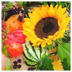Linoows Papierserviette 20 Servietten, Sonnenblumen Melonen und Beeren, Motiv Sonnenblumen Melonen und Beeren Intermezzo