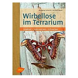 Wirbellose im Terrarium. Michael Meyer  Wolfgang Schmidt  - Buch