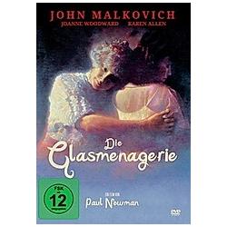 Die Glasmenagerie - DVD  Filme