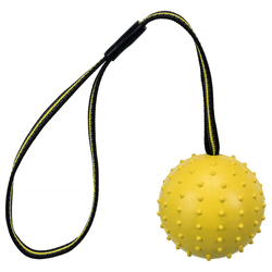 Trixie Sporting Ball am Gurt, Naturgummi und Polyester, Maße: ø 6 cm / 35 cm