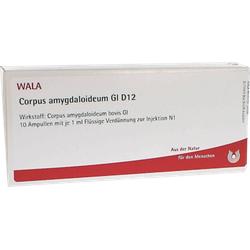 CORPUS AMYGDALOIDEUM GL D 12 Ampullen 10X1 ml
