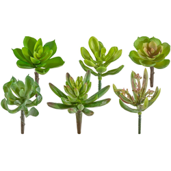 Kunstpflanze Sukkulenten Sukkulente, Creativ green, Höhe 10 cm, 12er Set