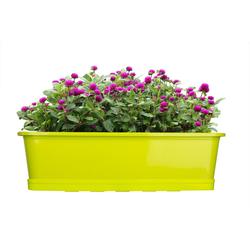 BigDean Blumenkasten für den Balkon − 2x Balkonkasten 80 cm Lime mit Untersetzer (2 Stück) 80 cm
