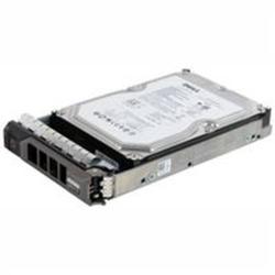 DELL 400-24600 FESTPLATTE / HDD 3,5 SAS 2.048 GB - FESTPLATTE - 7.200 RPM