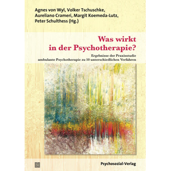 Was wirkt in der Psychotherapie?: eBook von