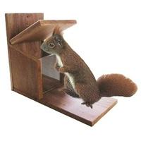 AP HOSS Futterstation Eichhörnchen braun
