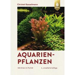 Aquarienpflanzen als Buch von Christel Kasselmann