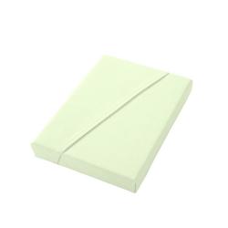 Dormisette Spannbettlaken grün 150 cm x 200 cm