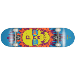 Playlife Skateboard Skullhead