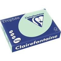 Clairefontaine Trophée A4 160 g/m2 250 Blatt (2635C)