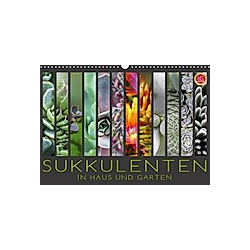 Sukkulenten in Haus und Garten (Wandkalender 2021 DIN A3 quer)