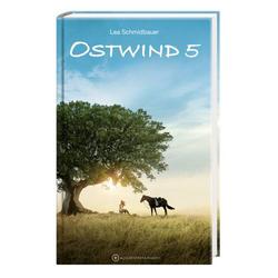Ostwind 5 - Aris Ankunft