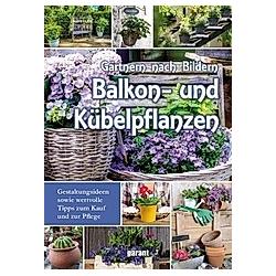 Balkon- und Kübelpflanzen - Buch