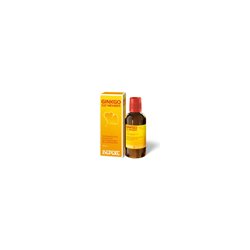 GINKGO BILOBA COMP.Hevert Tropfen 100 ml