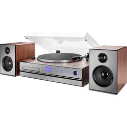 Dual NR 100 X Radioplattenspieler