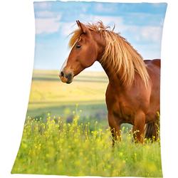 Kuscheldecke Pferde, 130 x 160 cm mehrfarbig