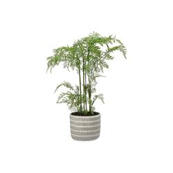 Kunstpflanze Kunstpflanze Farn im Topf, HTI-Living, Höhe 65 cm