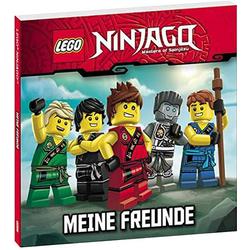 NIN LEGO NINJAGO Meine Freunde