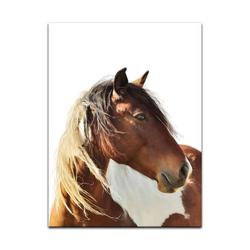 Bilderdepot24 Leinwandbild, Leinwandbild - Pferd - Portrait 90 cm x 120 cm