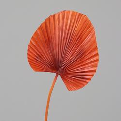 Kunstpflanze Palmblatt(H 103 cm)