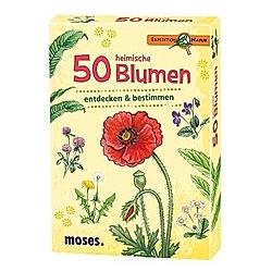 50 heimische Blumen entdecken & bestimmen