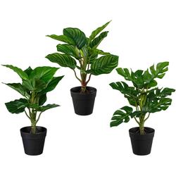 Künstliche Zimmerpflanze Set aus Grünpflanzen Grünpflanzen, Creativ green, Höhe 32 cm, 3er Set