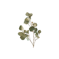 Boltze Dekozweig Eukalyptus in grün, 85 cm