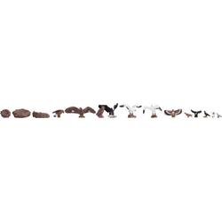 NOCH 15775 H0 Figuren Vögel
